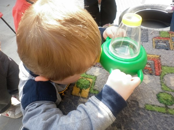 Bug hunting at Wellingborough Day Nursery 2